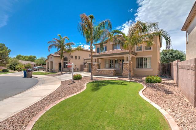 18673 E Kingbird Drive, Queen Creek, AZ 85142 (MLS #5634555) :: RE/MAX Infinity