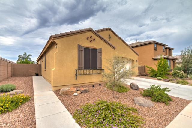 21081 E Via De Olivos, Queen Creek, AZ 85142 (MLS #5634872) :: The Daniel Montez Real Estate Group