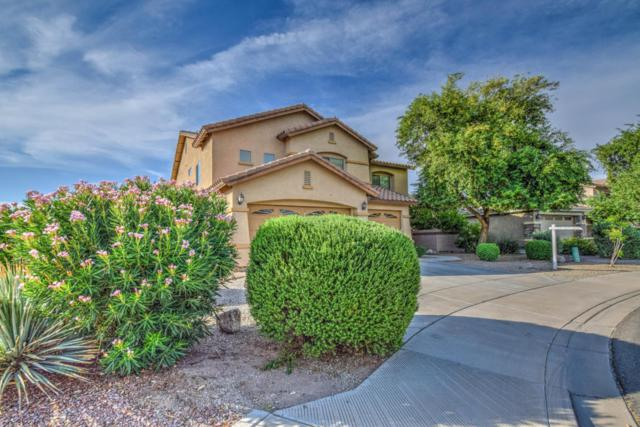 654 E Megan Drive, San Tan Valley, AZ 85140 (MLS #5634995) :: The Daniel Montez Real Estate Group