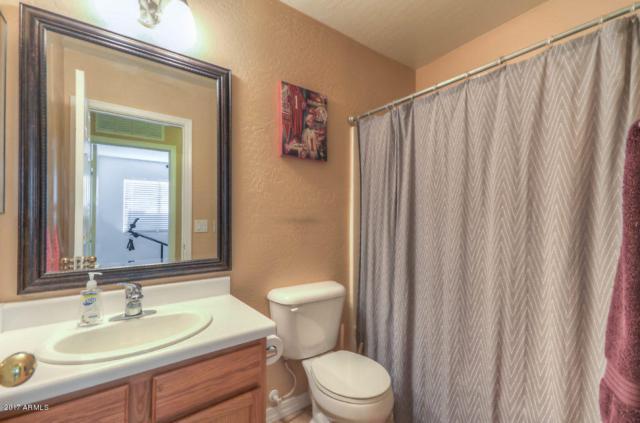 12391 W Devonshire Avenue, Avondale, AZ 85392 (MLS #5635019) :: Lifestyle Partners Team