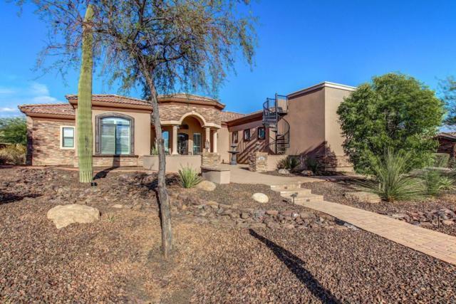 3227 N Canyon Wash Circle, Mesa, AZ 85207 (MLS #5635091) :: The Kenny Klaus Team