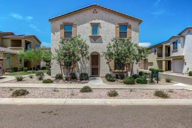 17738 W Banff Lane, Surprise, AZ 85388 (MLS #5635147) :: The AZ Performance Realty Team