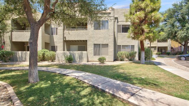 1295 N Ash Street #228, Gilbert, AZ 85233 (MLS #5635266) :: The Daniel Montez Real Estate Group
