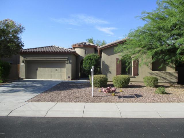 13411 W Chaparosa Way, Peoria, AZ 85383 (MLS #5635326) :: The Daniel Montez Real Estate Group