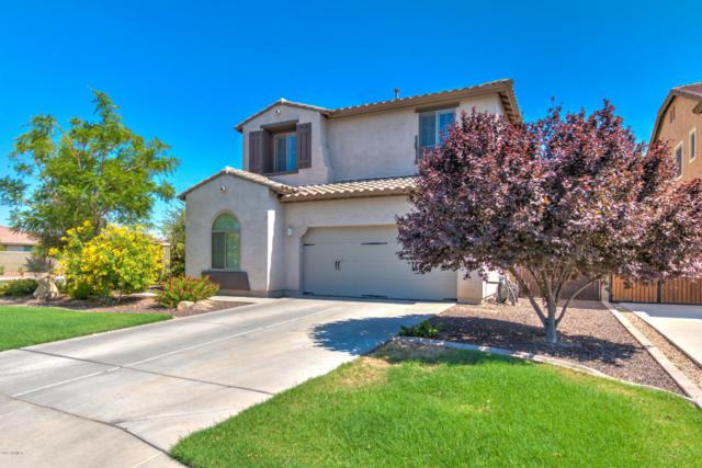 1089 E Euclid Avenue, Gilbert, AZ 85297 (MLS #5635336) :: The Daniel Montez Real Estate Group