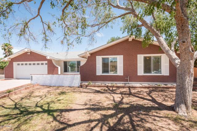2501 W Pampa Avenue, Mesa, AZ 85202 (MLS #5635386) :: The Daniel Montez Real Estate Group