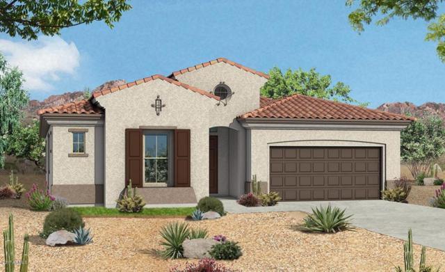 25956 N 104TH Drive, Peoria, AZ 85383 (MLS #5635390) :: The Daniel Montez Real Estate Group