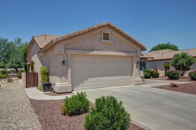 6610 S Granite Drive, Chandler, AZ 85249 (MLS #5635426) :: The Daniel Montez Real Estate Group