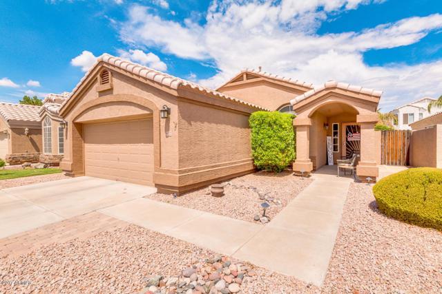 937 S Sailfish Drive, Gilbert, AZ 85233 (MLS #5635435) :: The Daniel Montez Real Estate Group