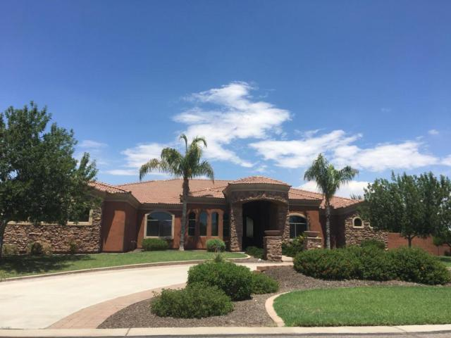 19862 E Sunset Drive, Queen Creek, AZ 85142 (MLS #5635439) :: The Daniel Montez Real Estate Group