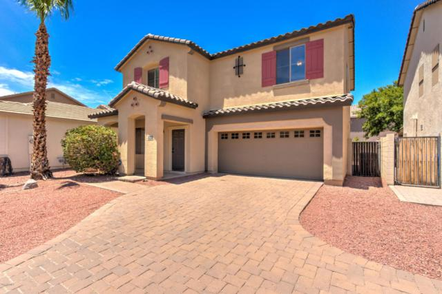 4508 E Loma Vista Street, Gilbert, AZ 85295 (MLS #5635441) :: The Daniel Montez Real Estate Group