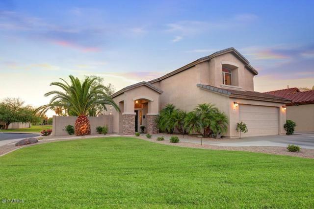 1094 S Roanoke Street, Gilbert, AZ 85296 (MLS #5635442) :: The Daniel Montez Real Estate Group