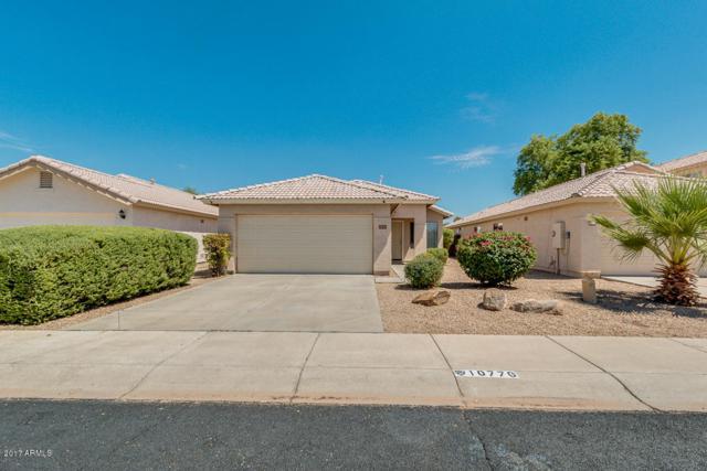 10776 W Monte Vista Road, Avondale, AZ 85323 (MLS #5635443) :: Lifestyle Partners Team
