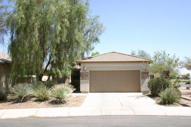 37167 W Mondragone Lane, Maricopa, AZ 85138 (MLS #5635456) :: The Daniel Montez Real Estate Group