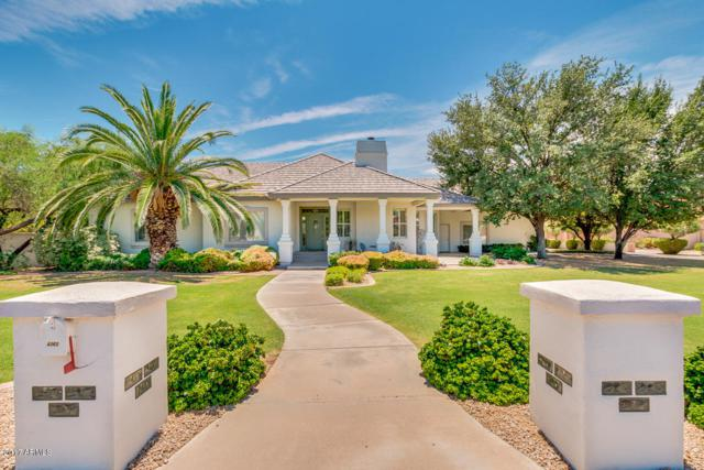 4369 E Harwell Court, Gilbert, AZ 85234 (MLS #5635460) :: The Daniel Montez Real Estate Group