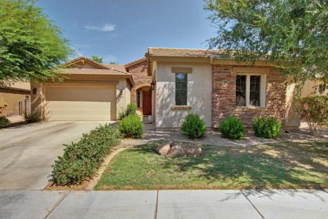 2630 E Iris Drive, Chandler, AZ 85286 (MLS #5635520) :: The Daniel Montez Real Estate Group