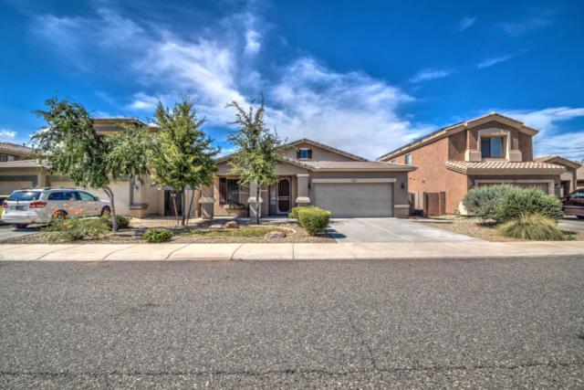 16230 W Evans Drive, Surprise, AZ 85379 (MLS #5635521) :: Lifestyle Partners Team