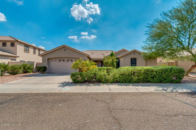 5387 W Kaler Circle, Glendale, AZ 85301 (MLS #5635524) :: The Daniel Montez Real Estate Group