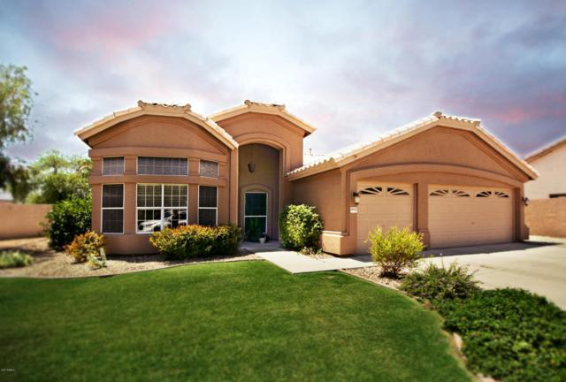 6909 W Hill Lane, Glendale, AZ 85310 (MLS #5635543) :: The Daniel Montez Real Estate Group