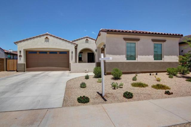 19698 E Strawberry Drive, Queen Creek, AZ 85142 (MLS #5635572) :: The Daniel Montez Real Estate Group