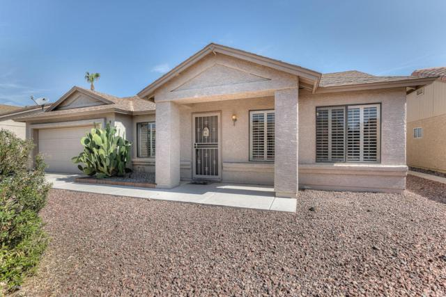 1528 E Spyglass Drive, Chandler, AZ 85249 (MLS #5635585) :: Lifestyle Partners Team