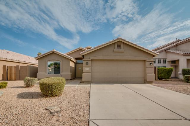 856 W Ivanhoe Street, Chandler, AZ 85225 (MLS #5635626) :: Lifestyle Partners Team