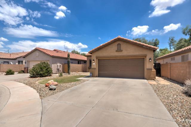 871 N David Court, Chandler, AZ 85226 (MLS #5635653) :: Santizo Realty Group