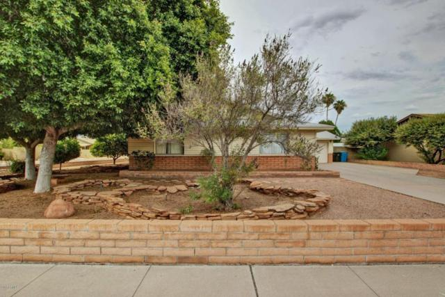 2730 W Evans Drive, Phoenix, AZ 85053 (MLS #5635702) :: Lifestyle Partners Team