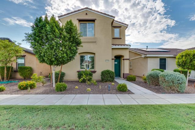 15380 W Columbine Drive, Surprise, AZ 85379 (MLS #5635731) :: Lifestyle Partners Team