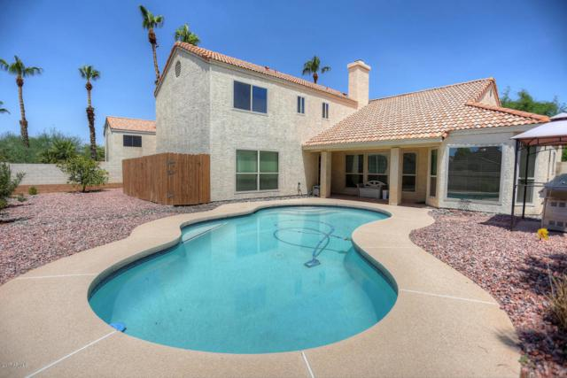 3925 E Wildwood Drive, Phoenix, AZ 85048 (MLS #5636071) :: Jablonski Real Estate Group