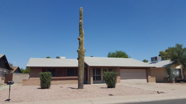 8029 N 105TH Lane, Peoria, AZ 85345 (MLS #5636111) :: Lux Home Group at  Keller Williams Realty Phoenix