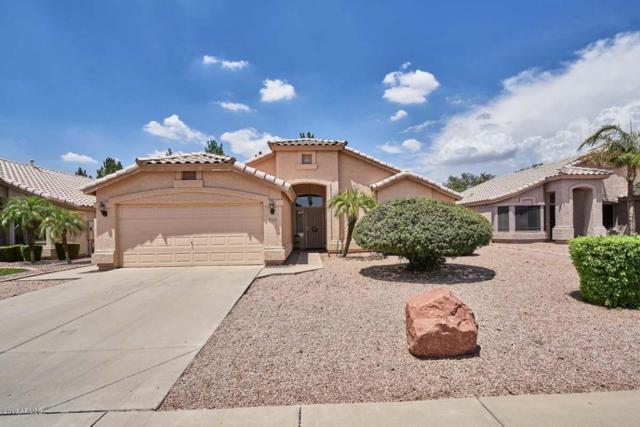 2352 E Marlene Drive, Gilbert, AZ 85296 (MLS #5636136) :: Lux Home Group at  Keller Williams Realty Phoenix