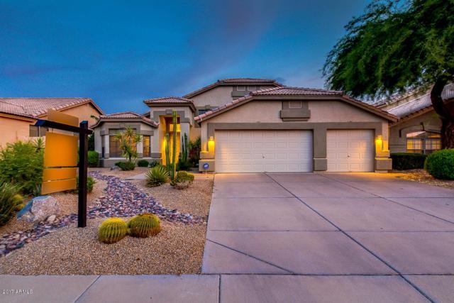 4319 E Morning Vista Lane, Cave Creek, AZ 85331 (MLS #5636157) :: Arizona Best Real Estate