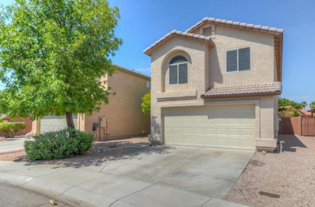 16636 S 43RD Place, Phoenix, AZ 85048 (MLS #5636187) :: Jablonski Real Estate Group