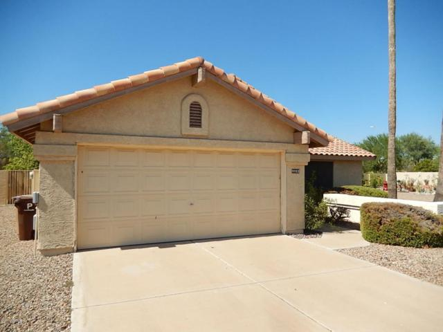 9802 W Menadota Drive, Peoria, AZ 85382 (MLS #5636401) :: Desert Home Premier