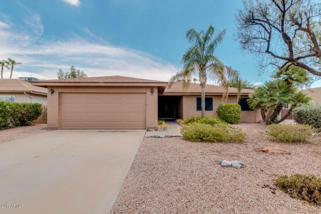 26433 S Greencastle Drive, Sun Lakes, AZ 85248 (MLS #5636484) :: RE/MAX Infinity