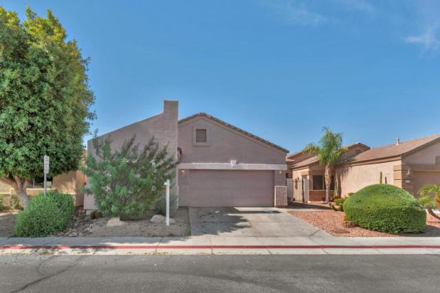 3249 E Fremont Road, Phoenix, AZ 85042 (MLS #5636520) :: Jablonski Real Estate Group
