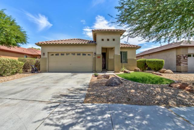 15347 W Jackson Street, Goodyear, AZ 85338 (MLS #5636527) :: Santizo Realty Group