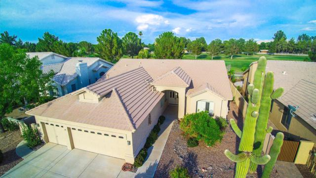 5743 S Amberwood Drive, Sun Lakes, AZ 85248 (MLS #5636530) :: RE/MAX Infinity