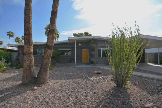 706 E Loyola Drive, Tempe, AZ 85282 (MLS #5636533) :: Jablonski Real Estate Group