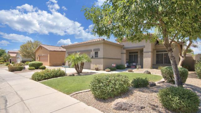 876 E Virgo Place, Chandler, AZ 85249 (MLS #5636556) :: Jablonski Real Estate Group