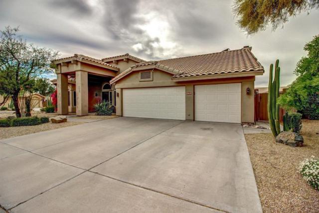 30620 N 46TH Street, Cave Creek, AZ 85331 (MLS #5636598) :: Arizona Best Real Estate