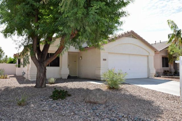 16257 N 138TH Avenue, Surprise, AZ 85374 (MLS #5636610) :: Devor Real Estate Associates