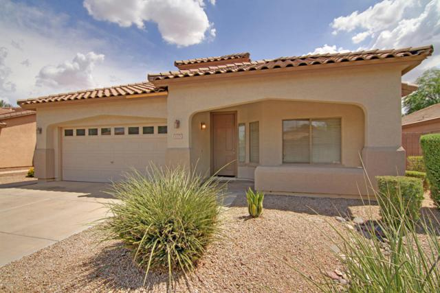 1175 E Locust Drive, Chandler, AZ 85286 (MLS #5636626) :: Jablonski Real Estate Group