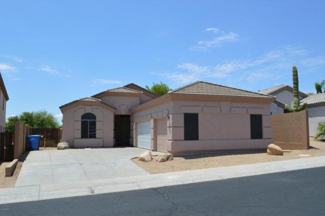 26814 N 65TH Drive, Phoenix, AZ 85083 (MLS #5636661) :: Devor Real Estate Associates