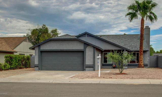 5800 W Folley Street, Chandler, AZ 85226 (MLS #5636692) :: Devor Real Estate Associates