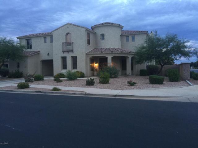 20294 E Calle De Flores, Queen Creek, AZ 85142 (MLS #5636722) :: Santizo Realty Group