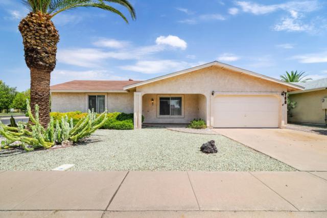 760 Leisure World, Mesa, AZ 85206 (MLS #5636789) :: Revelation Real Estate