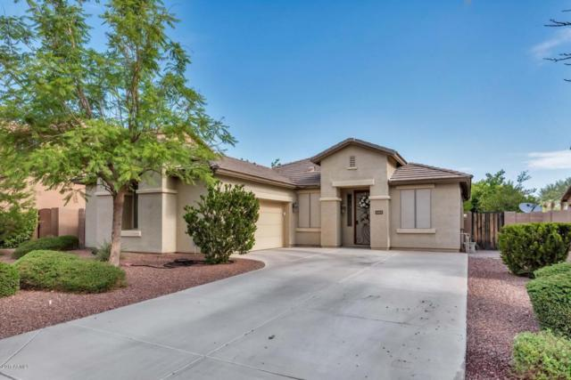 2482 E Hampton Lane, Gilbert, AZ 85295 (MLS #5636791) :: The Pete Dijkstra Team
