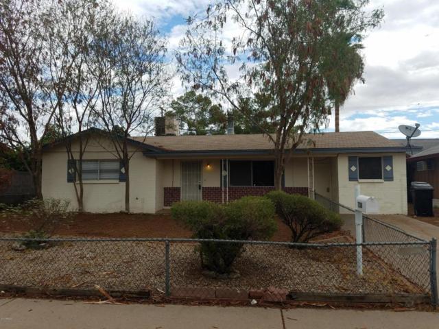 7138 E Azalea Circle, Mesa, AZ 85208 (MLS #5636799) :: Santizo Realty Group